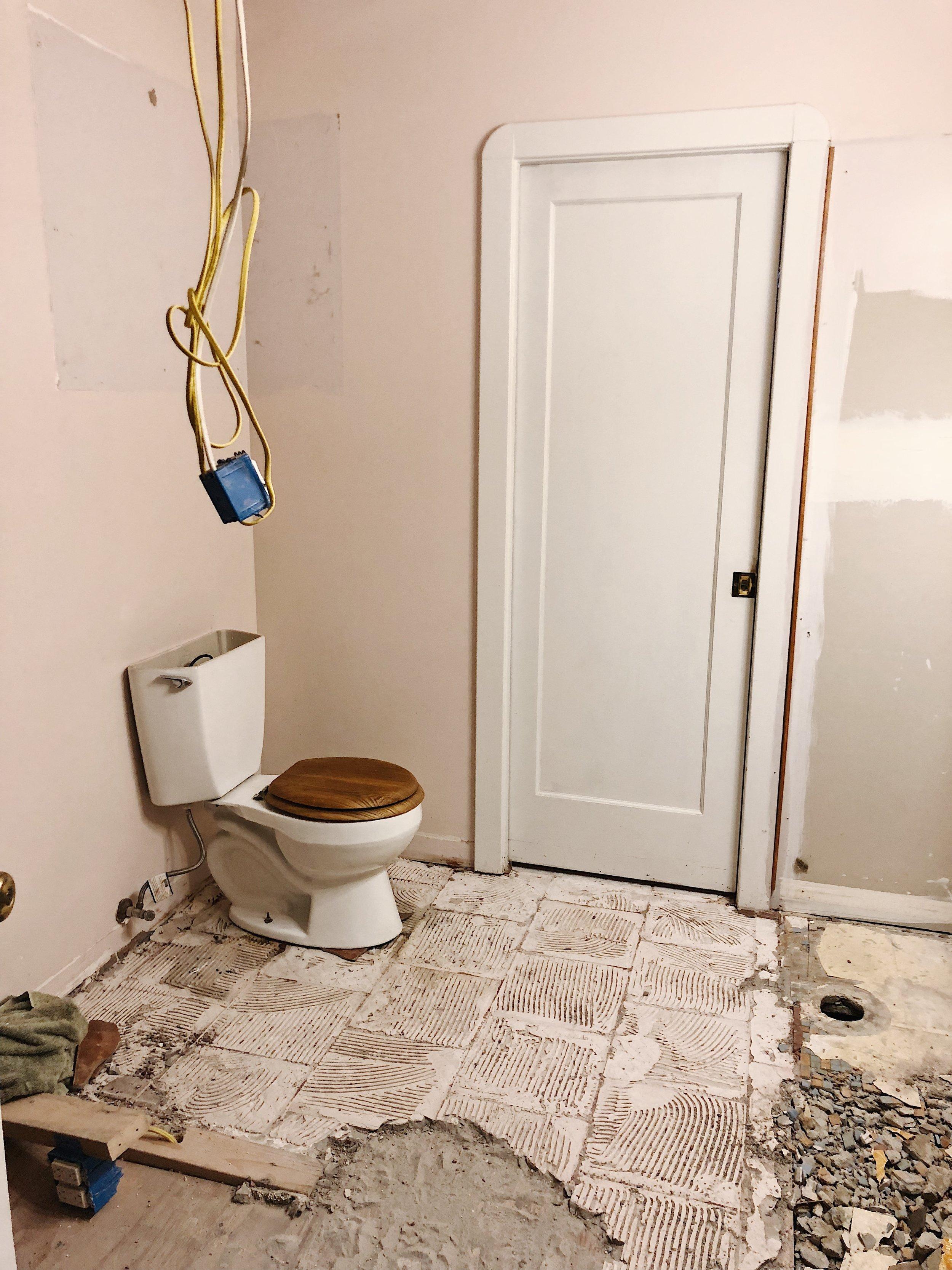 Lonely Toilet.JPG