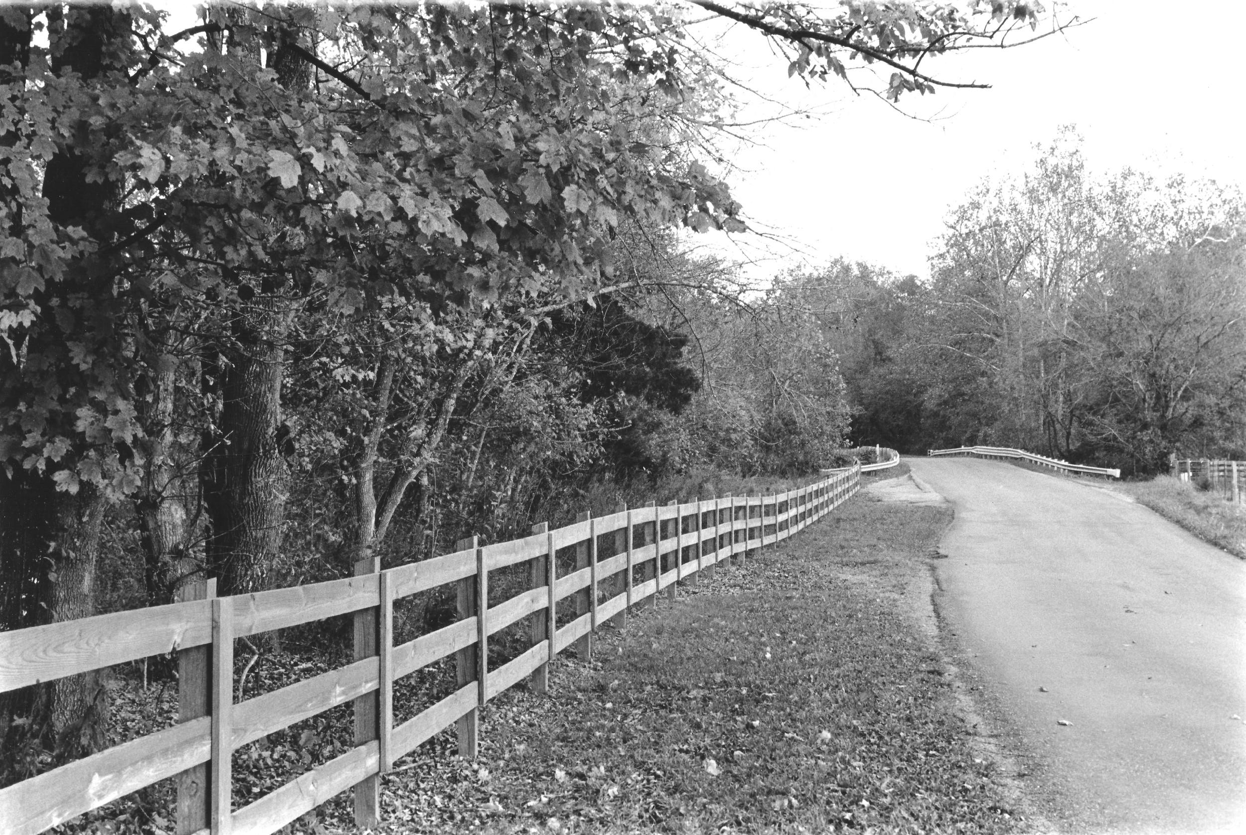 Virginia Road