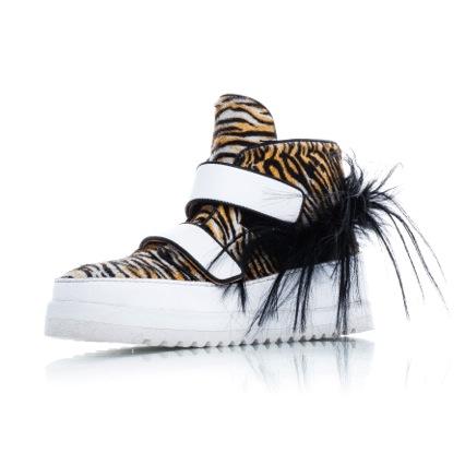 Sioux zebra