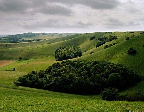 The South Downs Way above Folkington