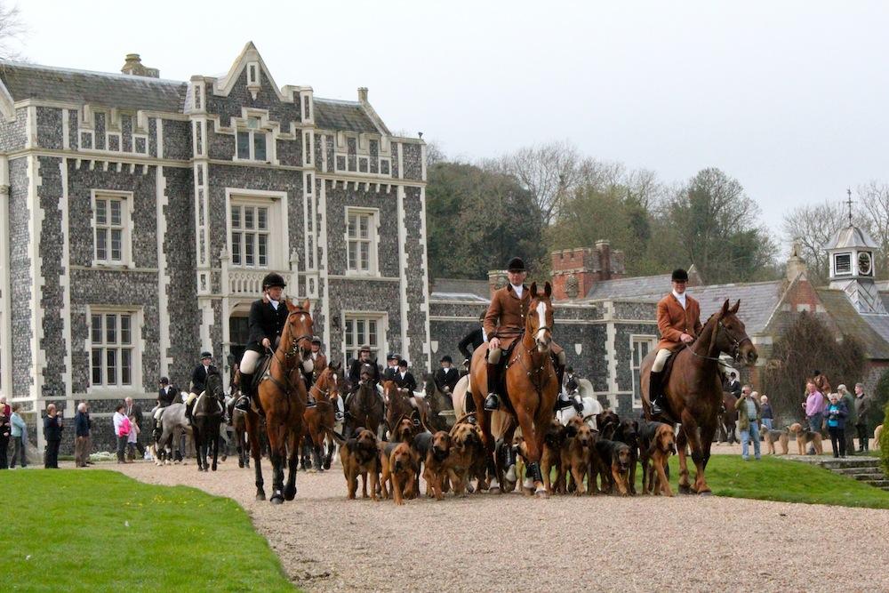 Coakham Bloodhounds Meet 2011