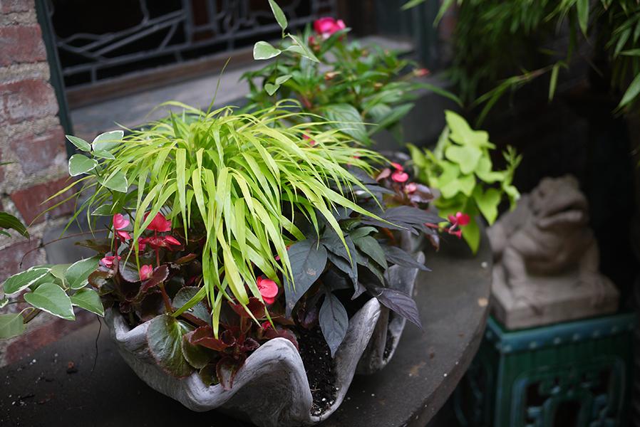 Container Garden -