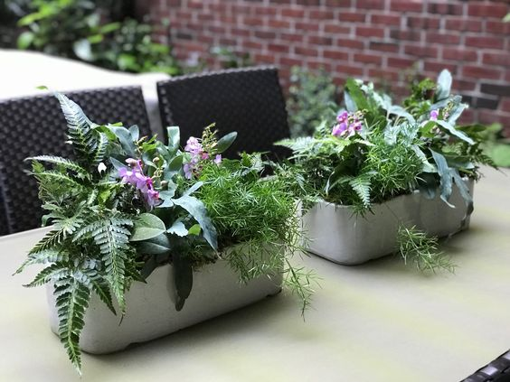 "A ""living centerpiece"" adds a beautiful touch to an outdoor table, and it can last the whole season!"