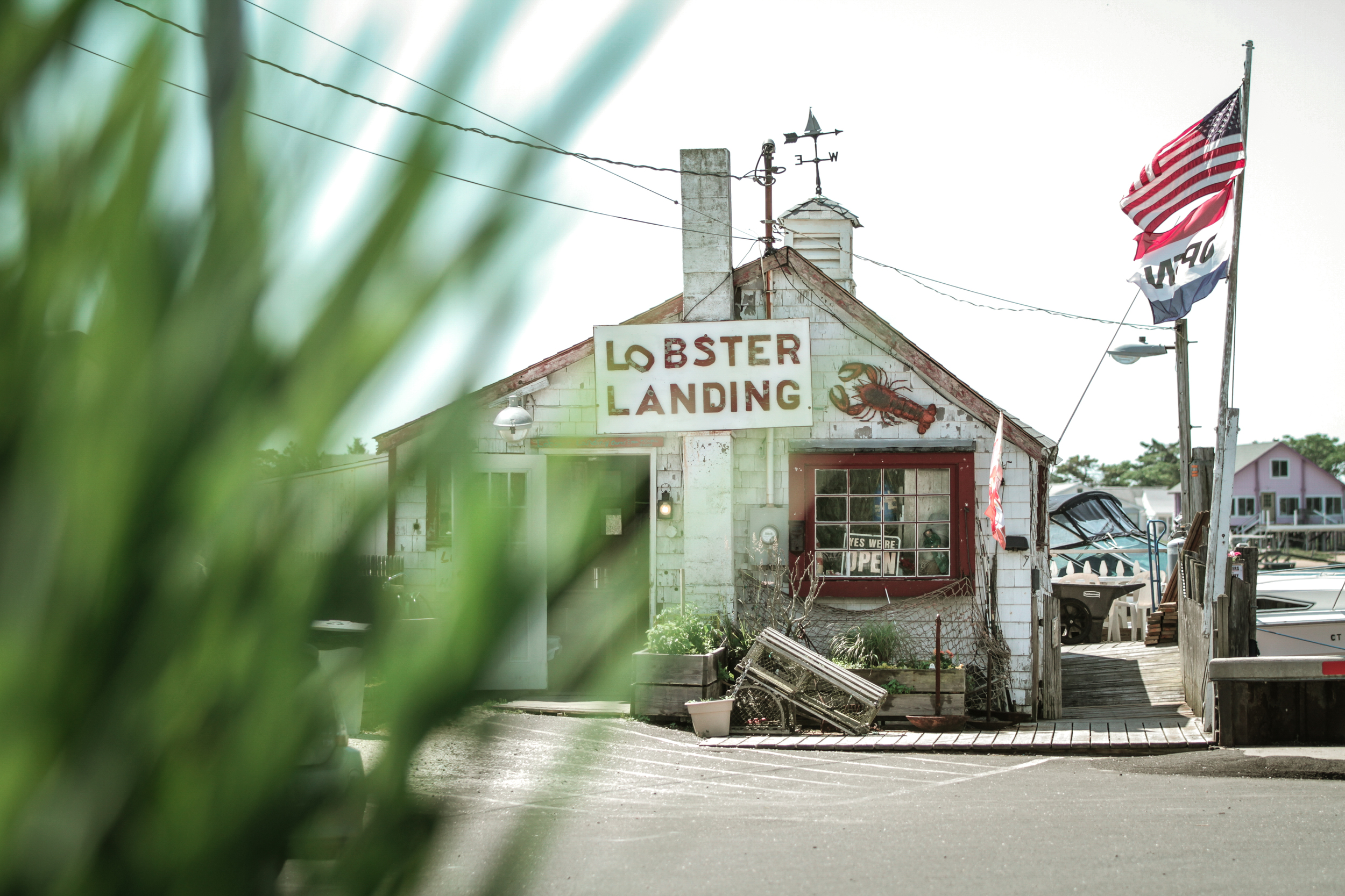 - New England Classic -   Lobster Landing    Read Article