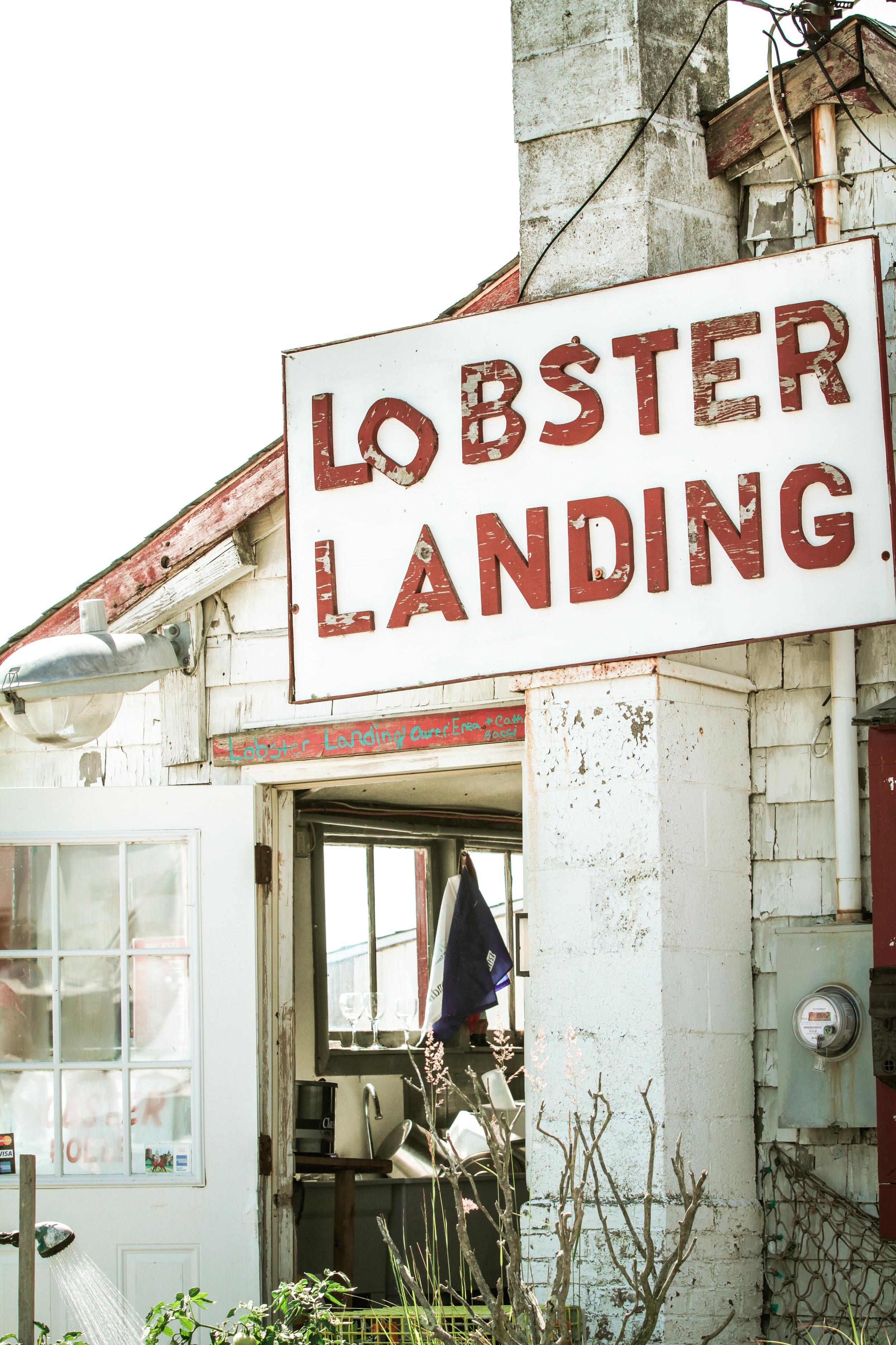 Lobster Landing-1.jpg