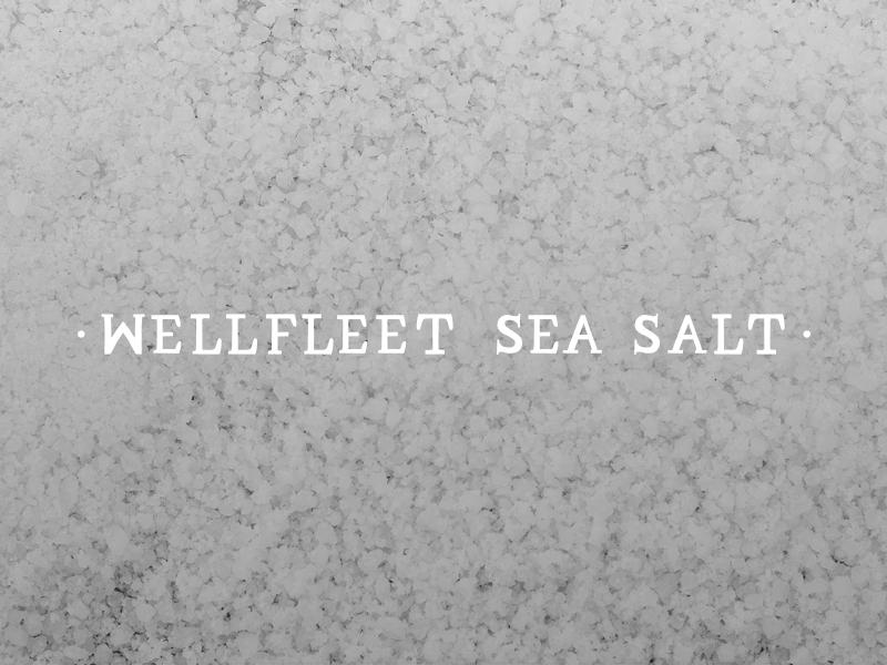 DAY 19 - WELLFLEET SEA SALT