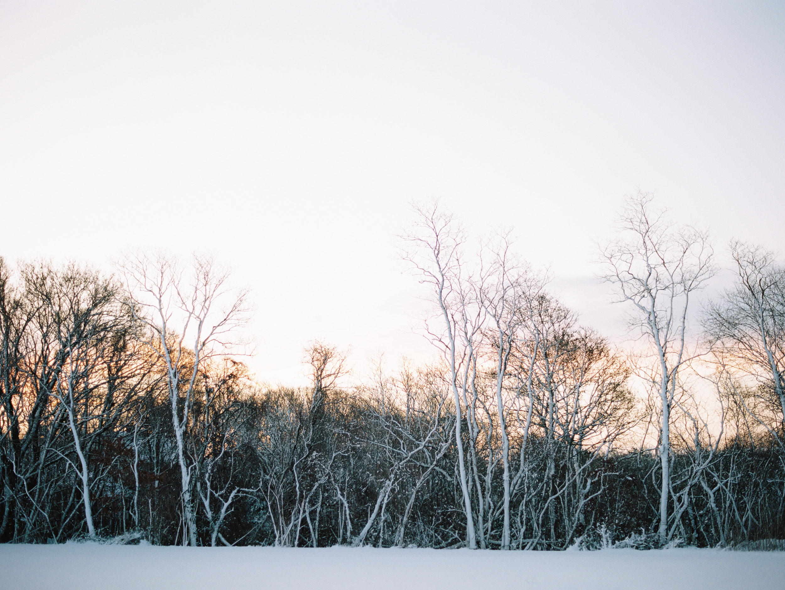 014-fine-art-photography-le-petite-peach-cape-cod-brumley & wells.jpg