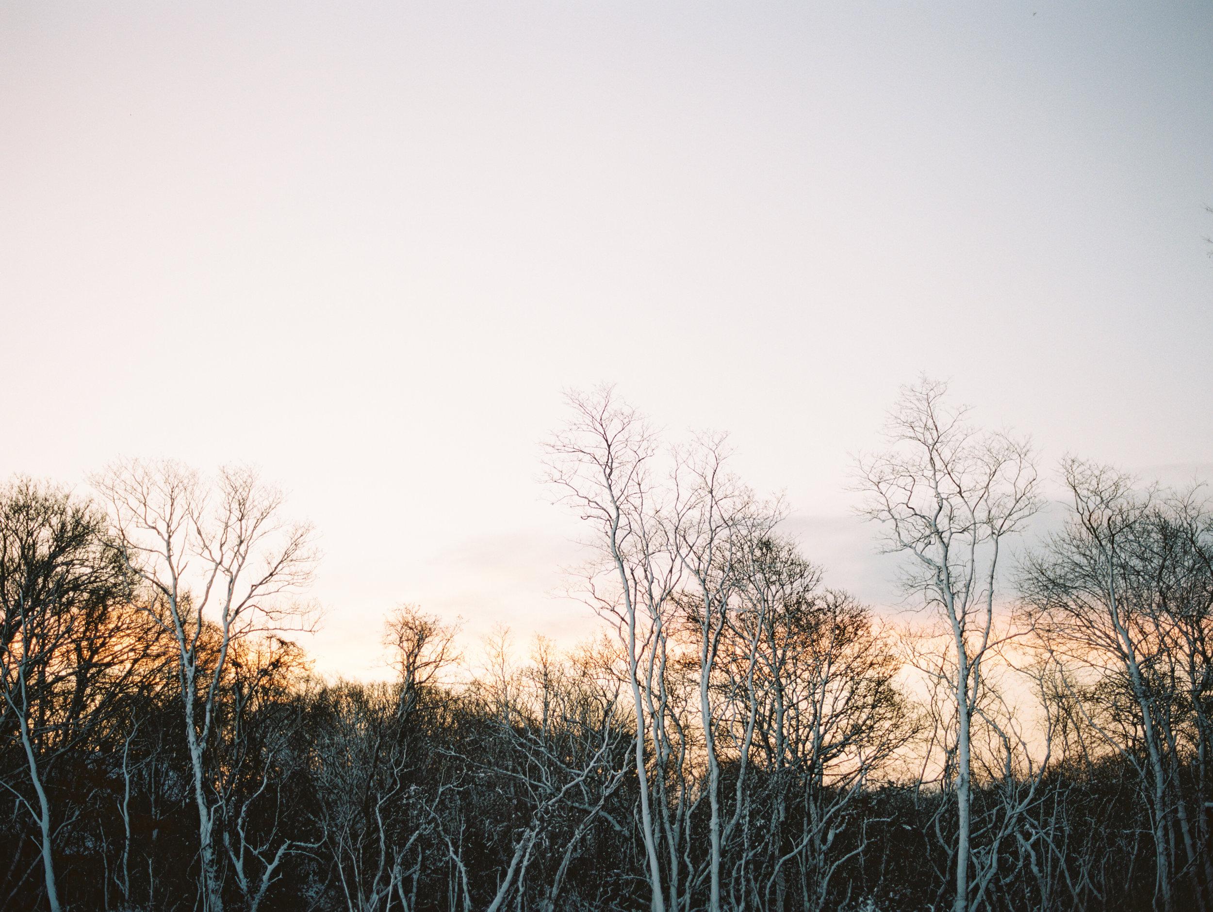 015-fine-art-photography-le-petite-peach-cape-cod-brumley & wells.jpg