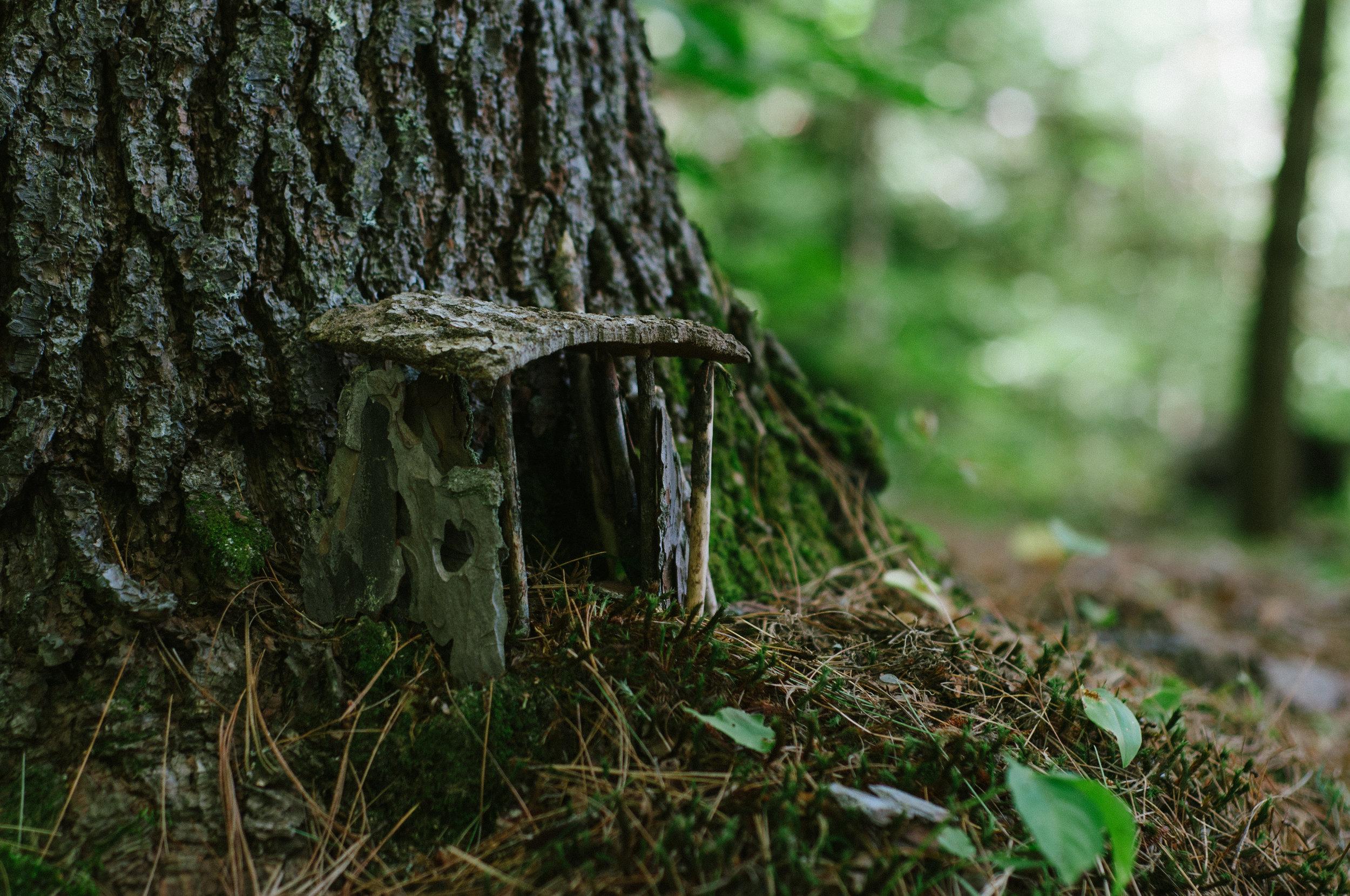 FairyHouses-2.jpg