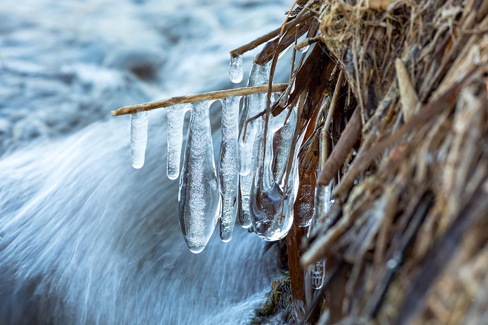 Formes de glace au bord du lac de Sanguinet
