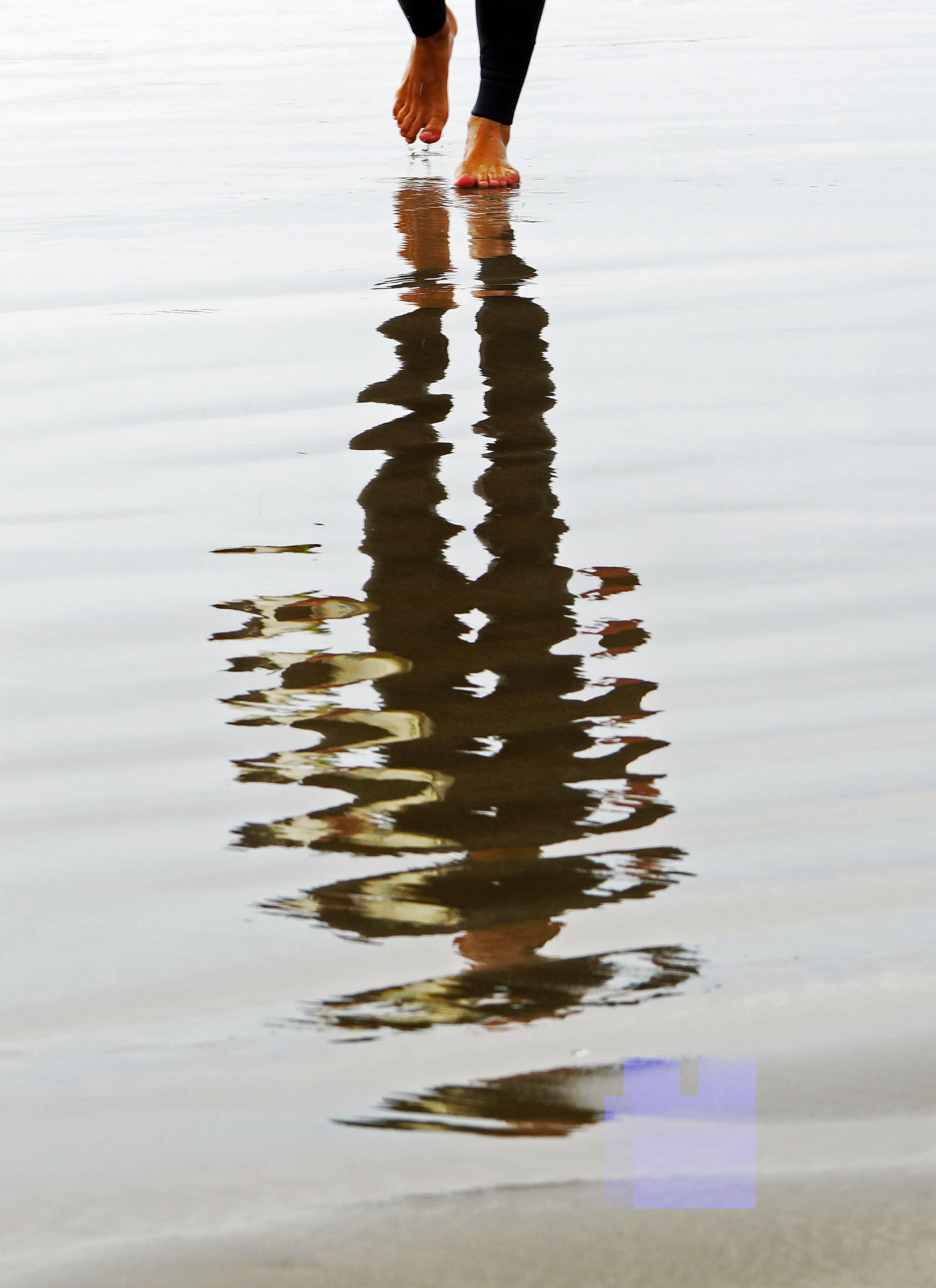 reflection_1_big.jpg