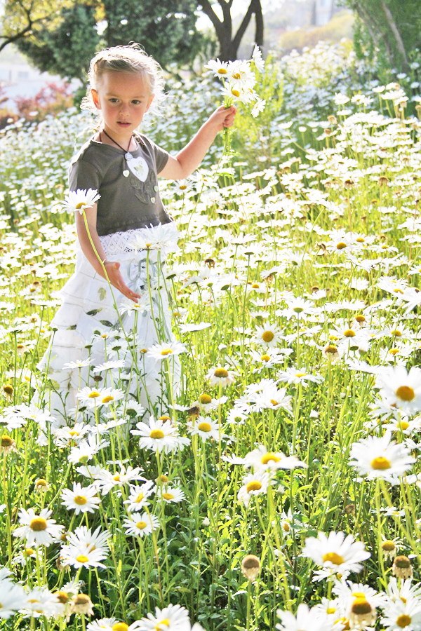 venice_daisy_4.jpg