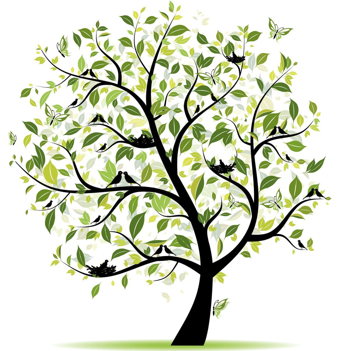Spring tree green with birds for your design.jpg