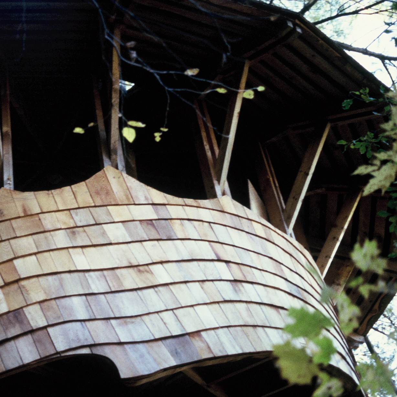 YM Treehouse.jpg