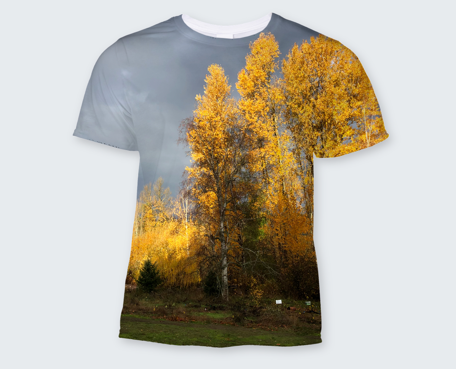How about a t-shirt, sweat shirt of tote bag with your favorite photo?