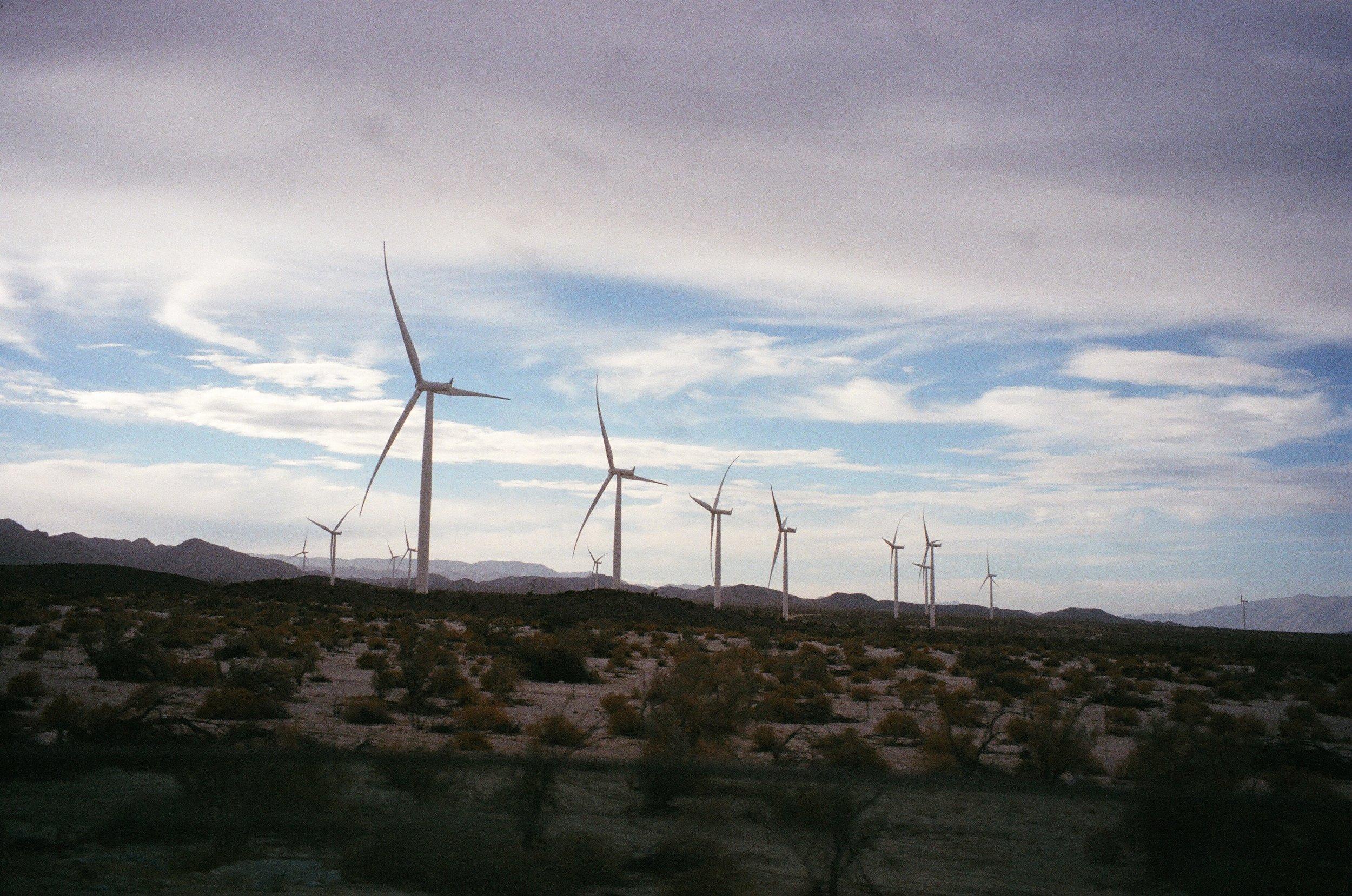 Windmills landscape.JPG