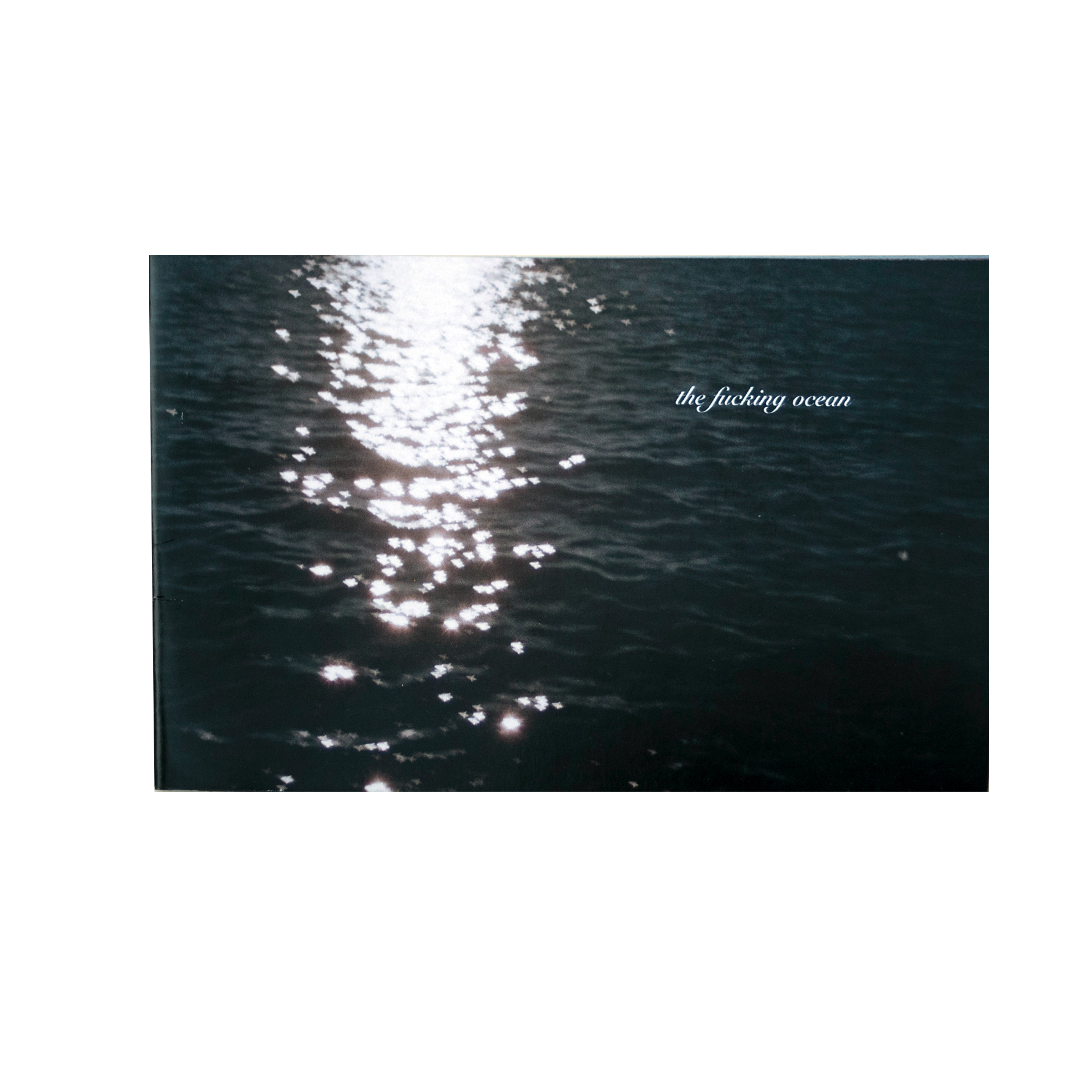 The Fucking Ocean pt. 1  $15 (U.S. shipping included)