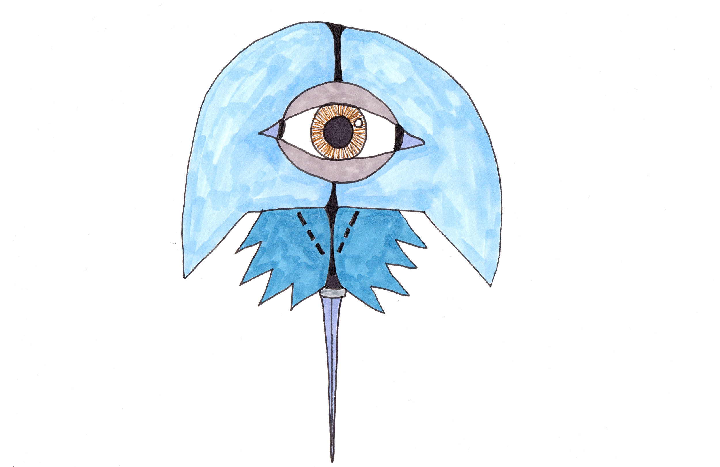 Horseshoe crab blue for website.jpg