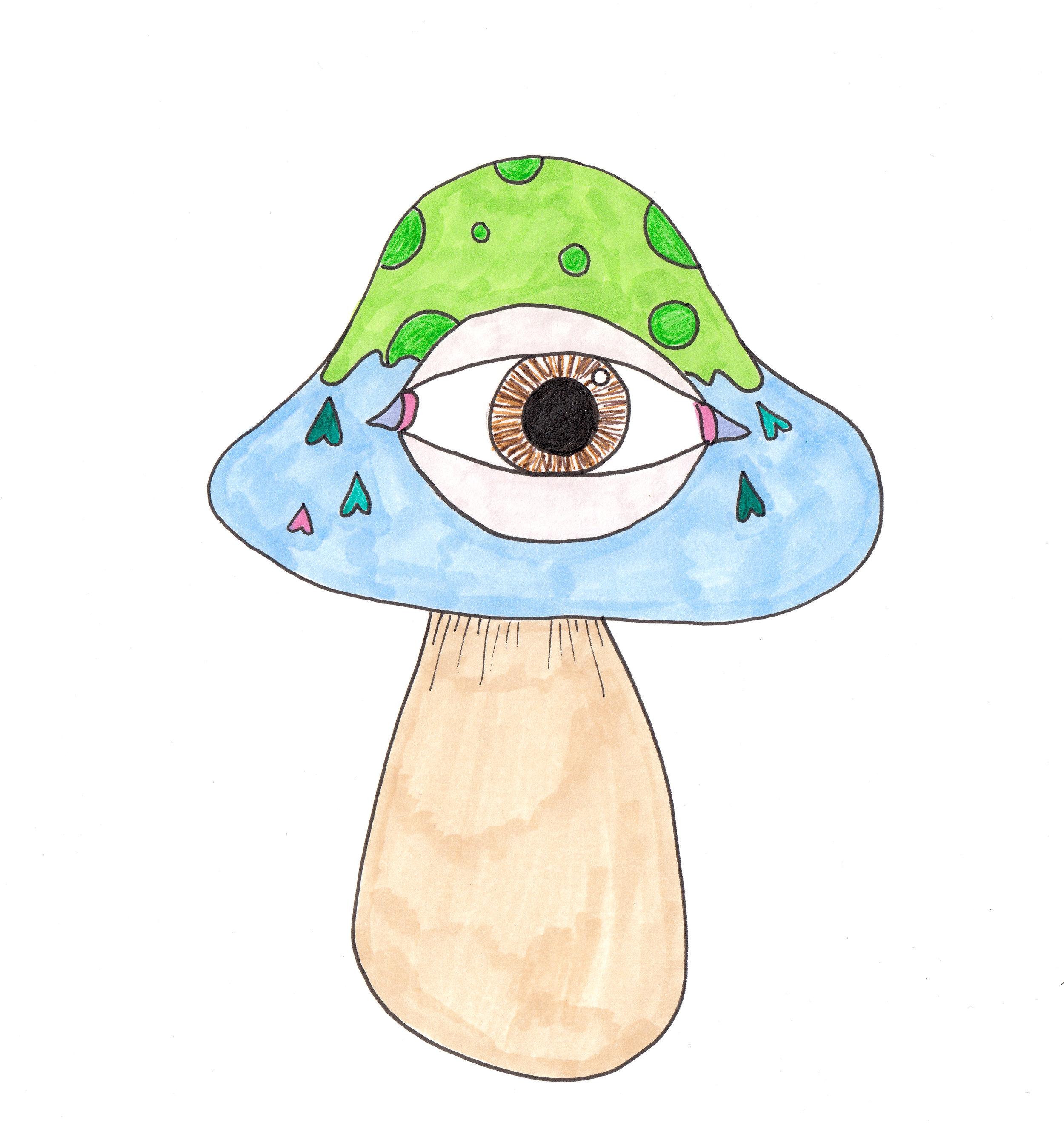 Mushroom crop.jpg