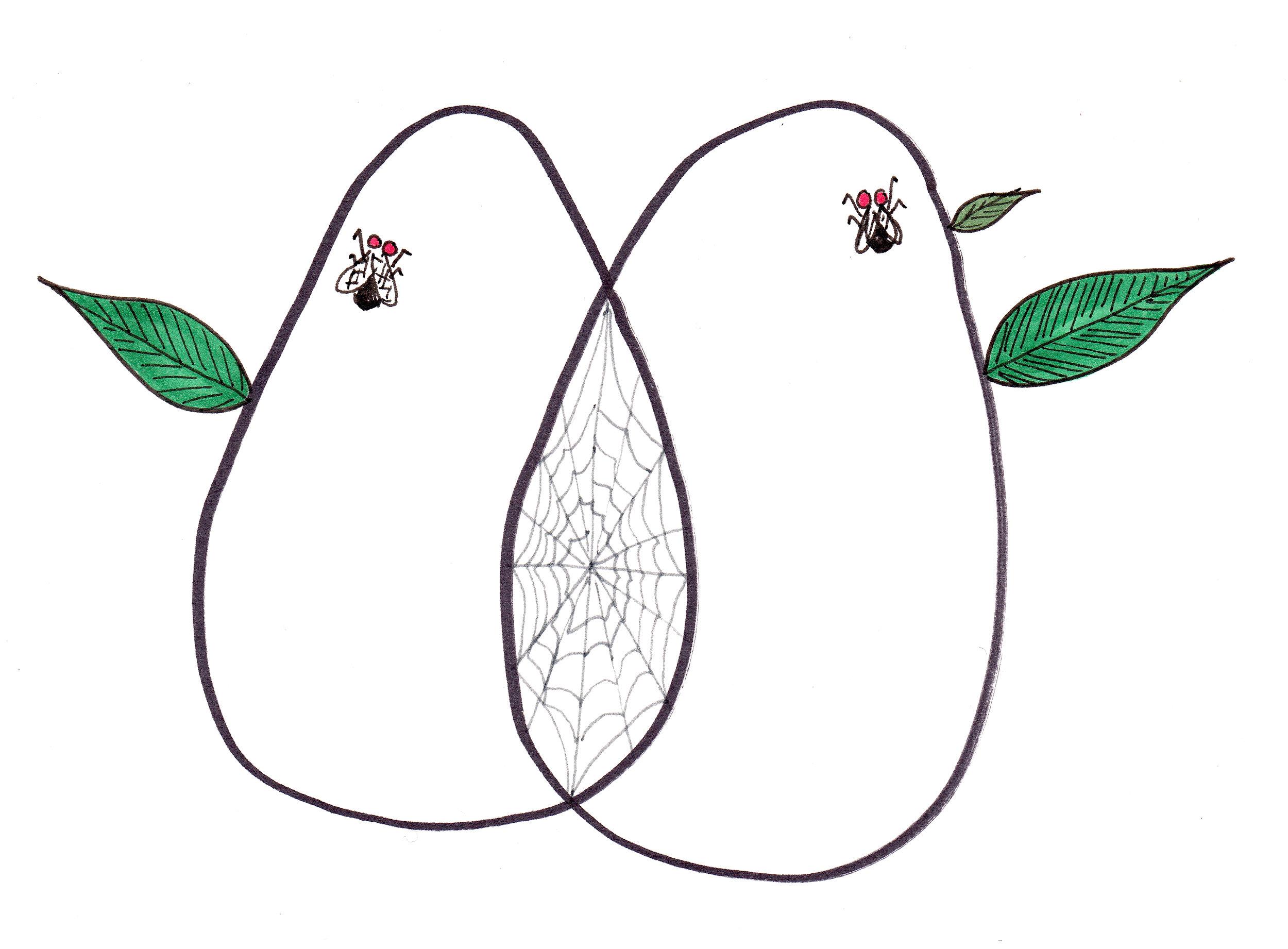 Flies with web .jpg