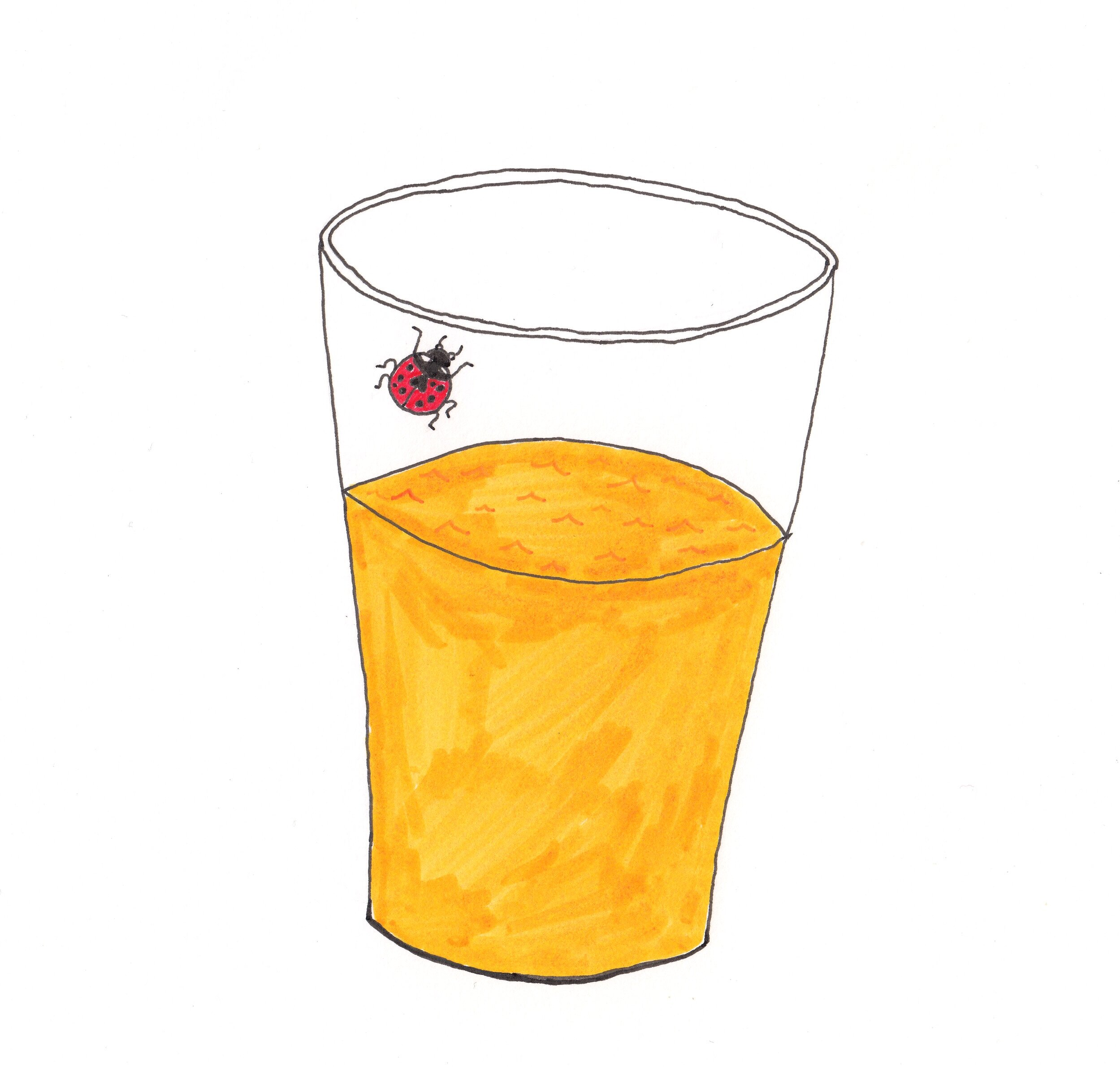 Juice with ladybug crop .jpg