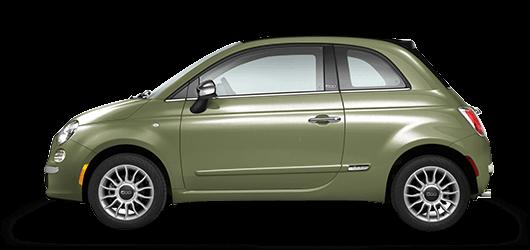 VERDE OLIVA (olive green)