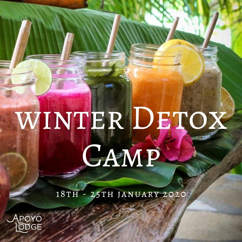 Winter Detox Camp.jpg