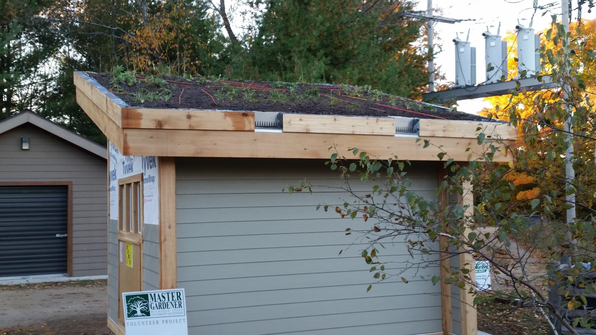 Roof6.jpg