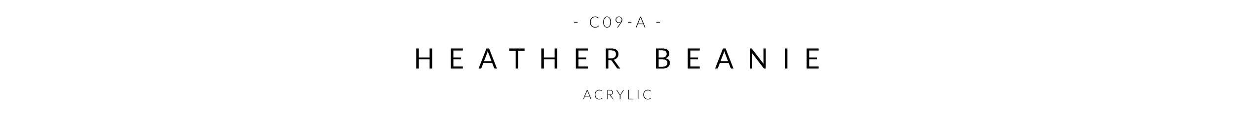 C03-A - HEADER.jpg
