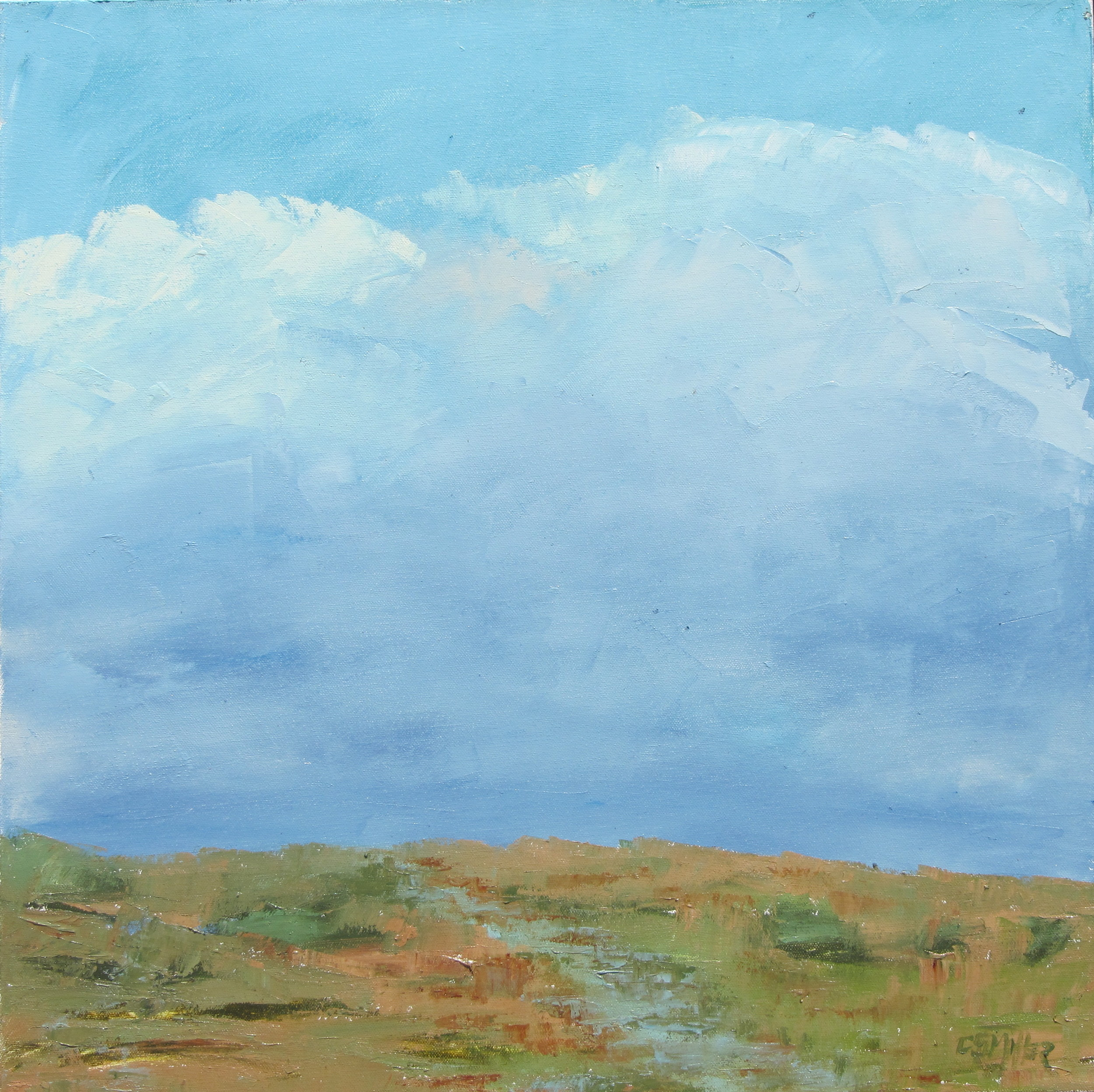Passing Storm_Connie Miller_24x24.jpg