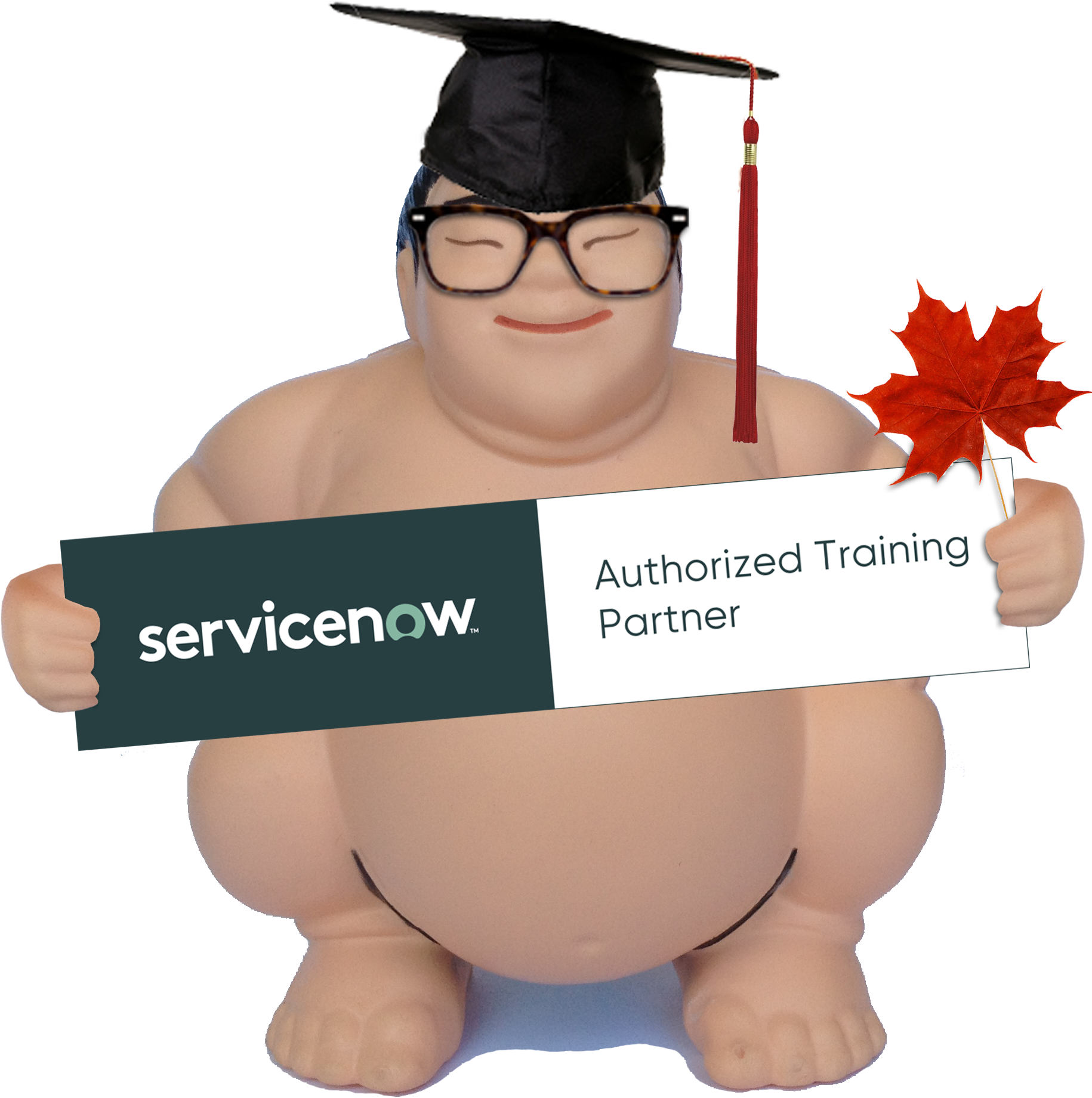 SuMO is the ONLY Canadian-owned ServiceNow ELITE SERVICES Partner to be certified by ServiceNow to deliver formal ServiceNow Training.