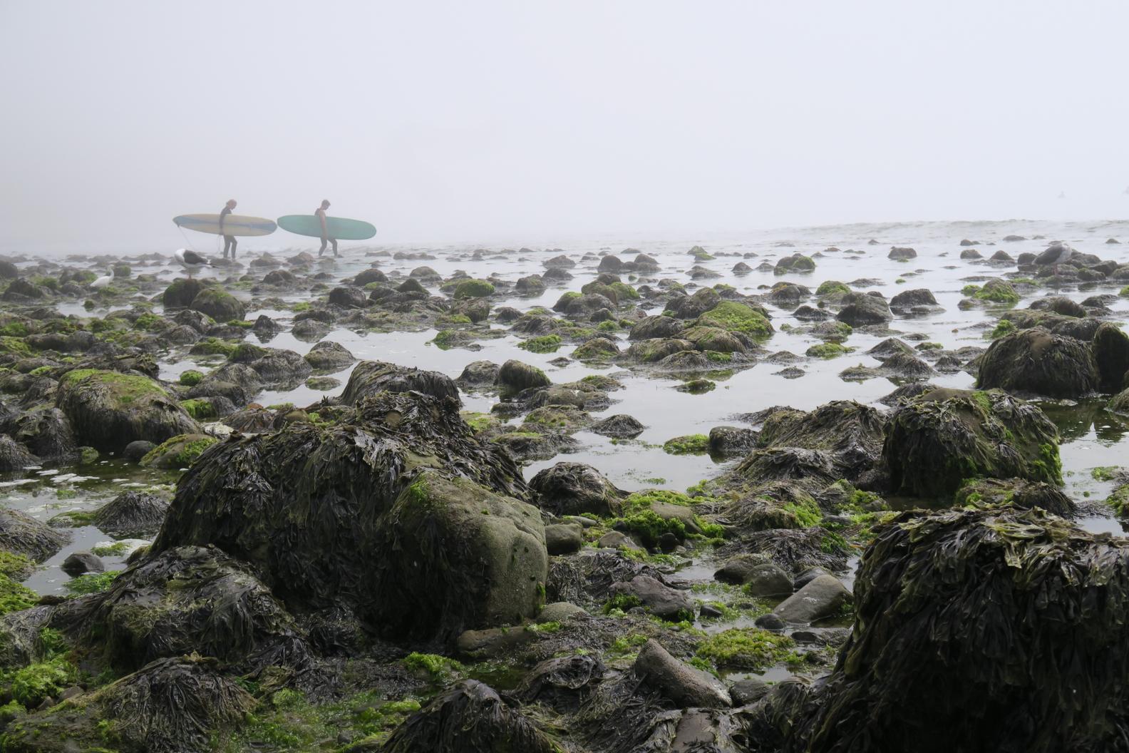 bg-malibu-bfam-2017-6.jpg