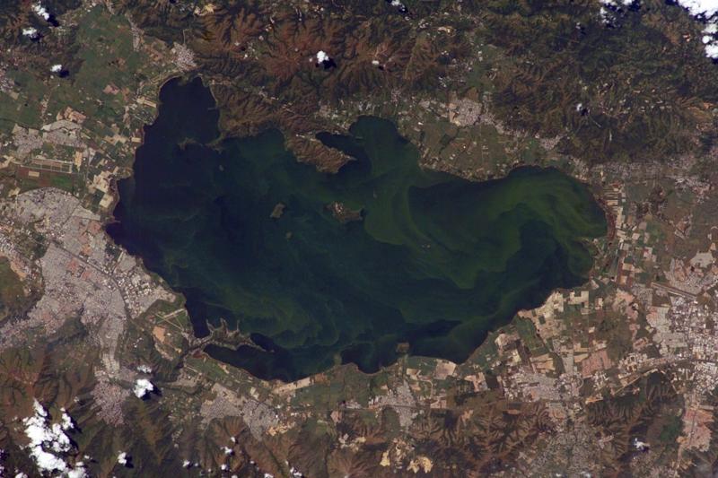 La gestión ambiental eficiente evitará/remediará serios impactos como la eutrofización de lagos. Foto del Lago de Valencia - Venezuela.