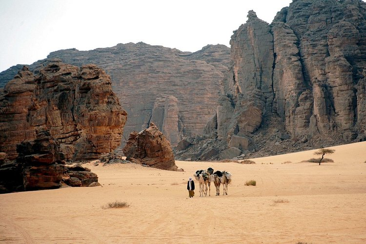 Rocas de arenisca