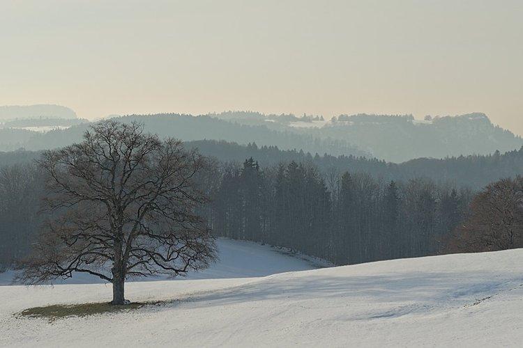 Jura de Suabia en invierno