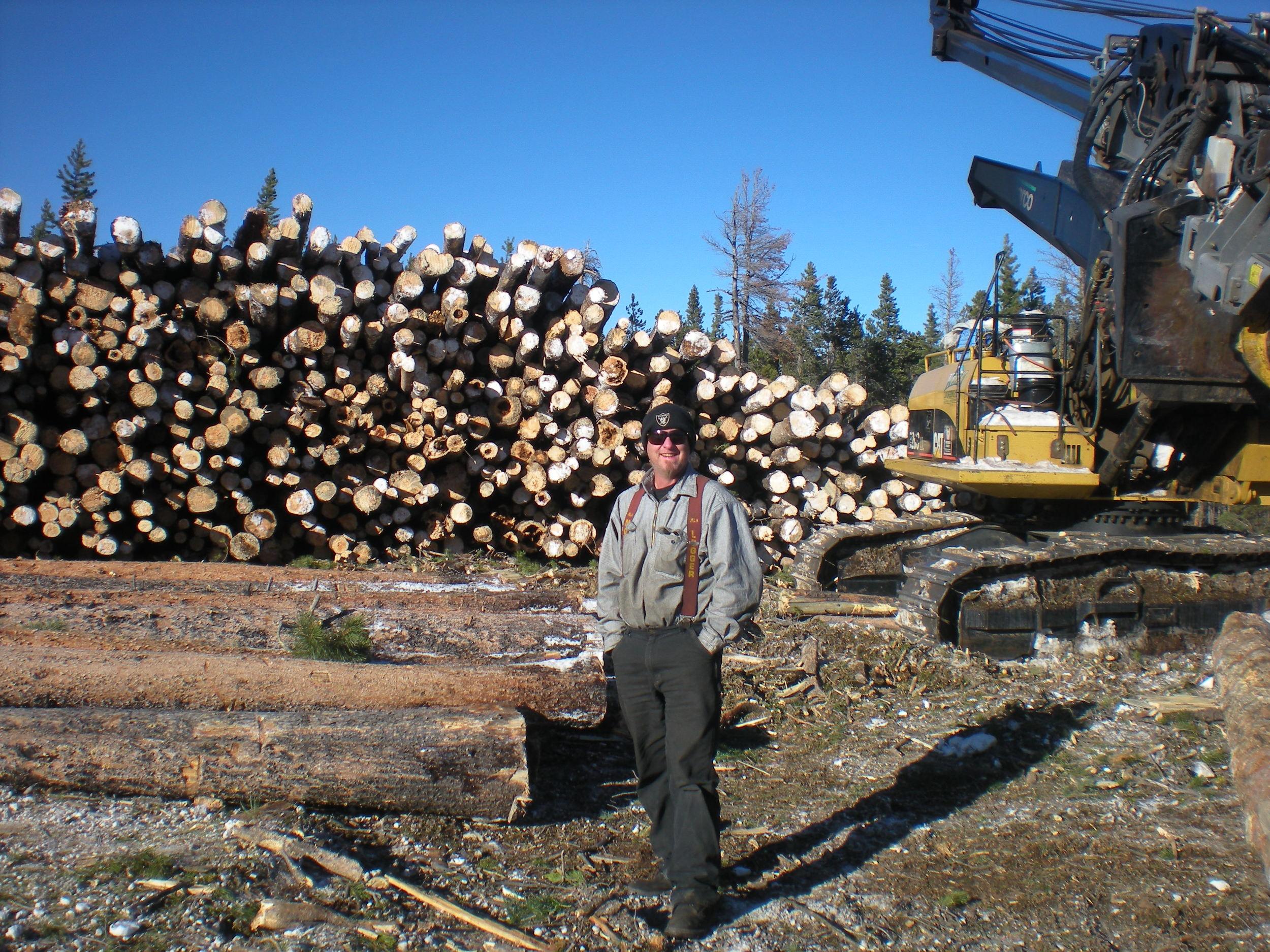 Jason Berg delimbing in Colorado