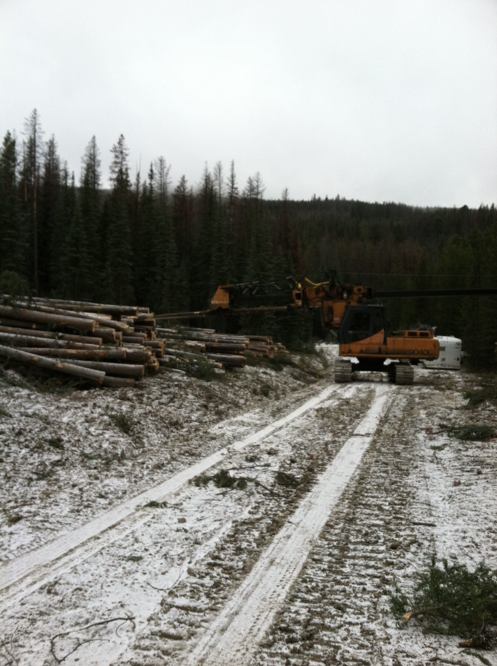 Alan Glassburn delimbing in Montana