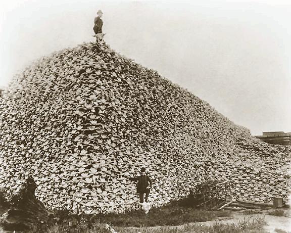 BisonMute