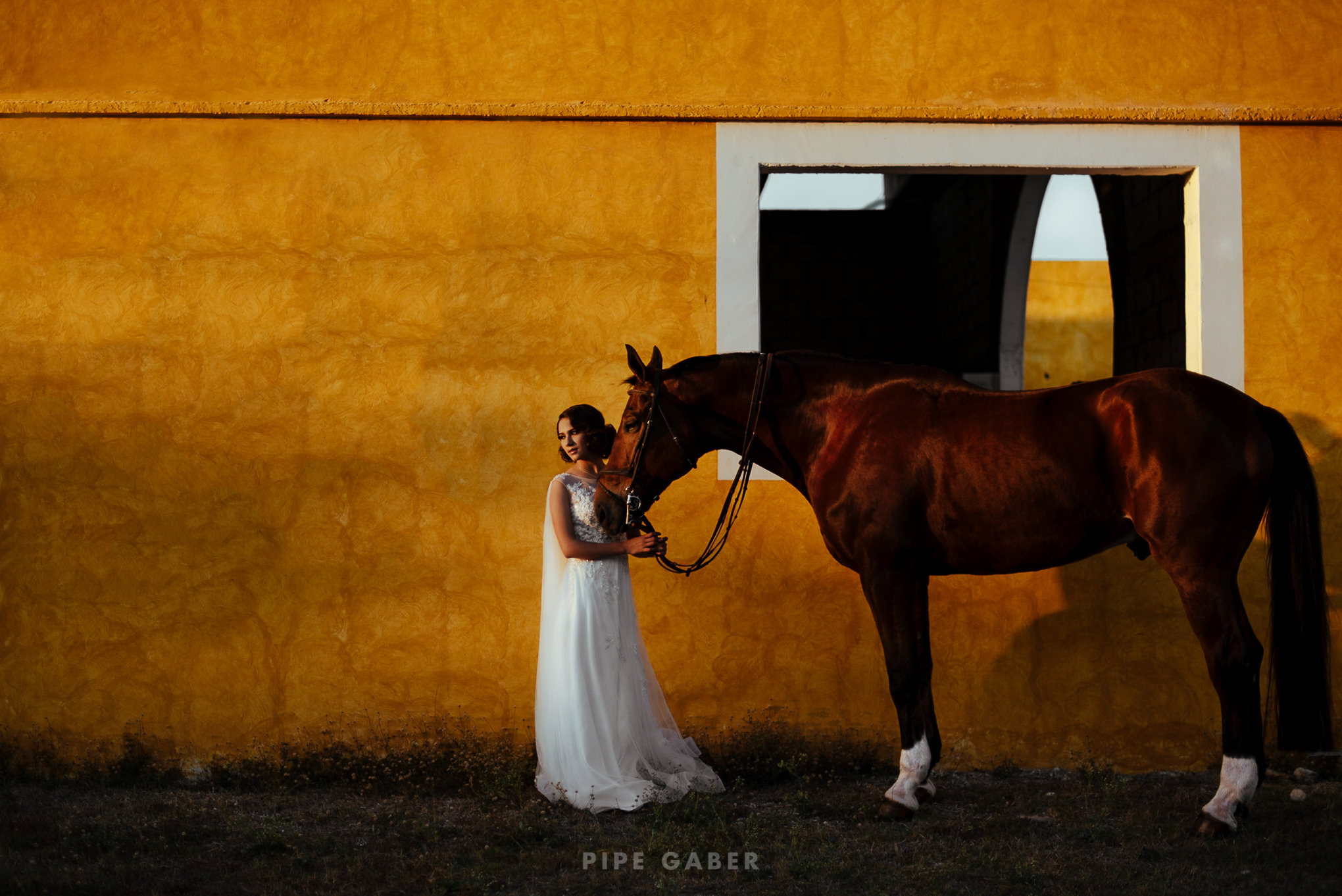 Trash_the_dress_horses_caballo_fotografia_merida_8.JPG