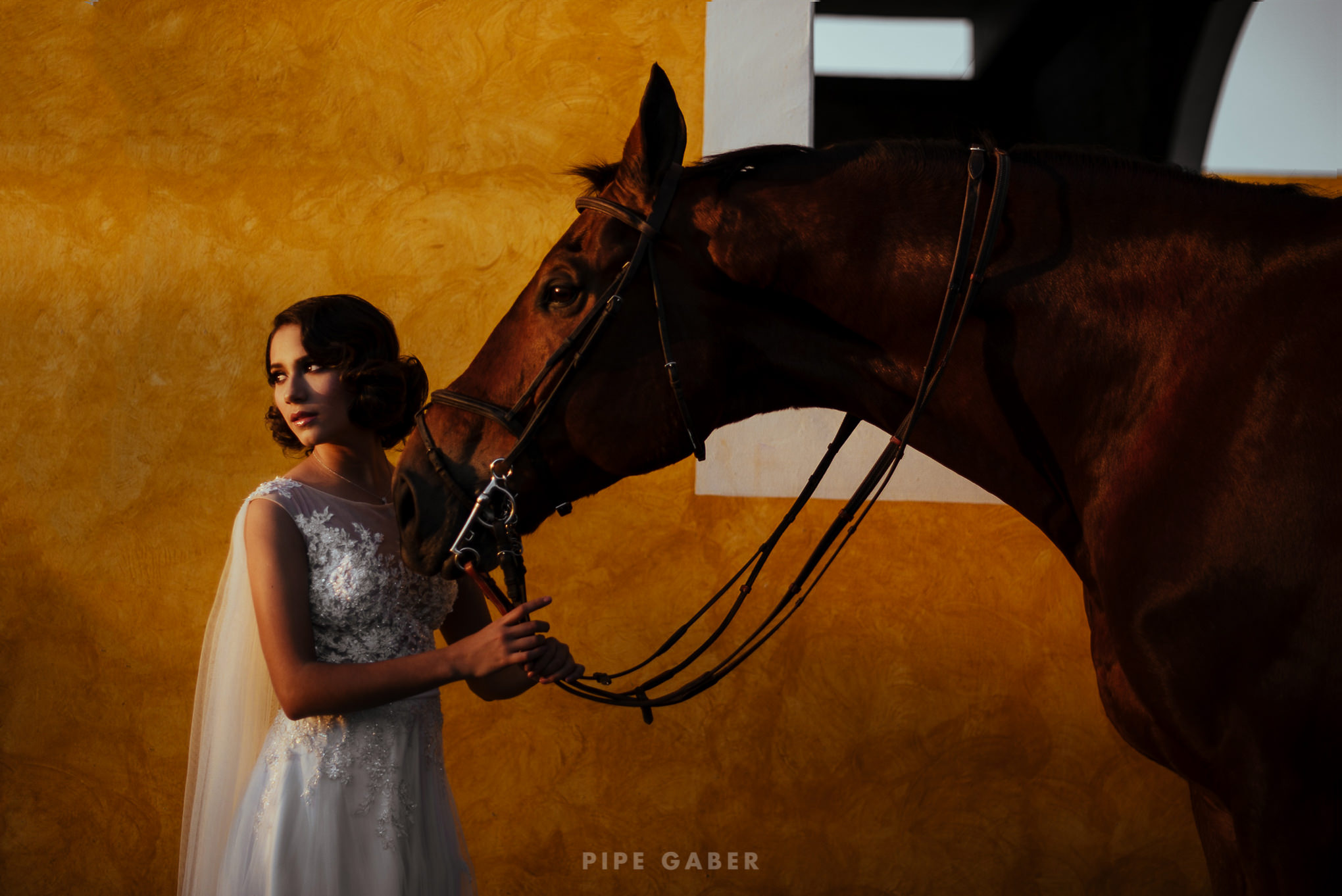 Trash_the_dress_horses_caballo_fotografia_merida_9.JPG
