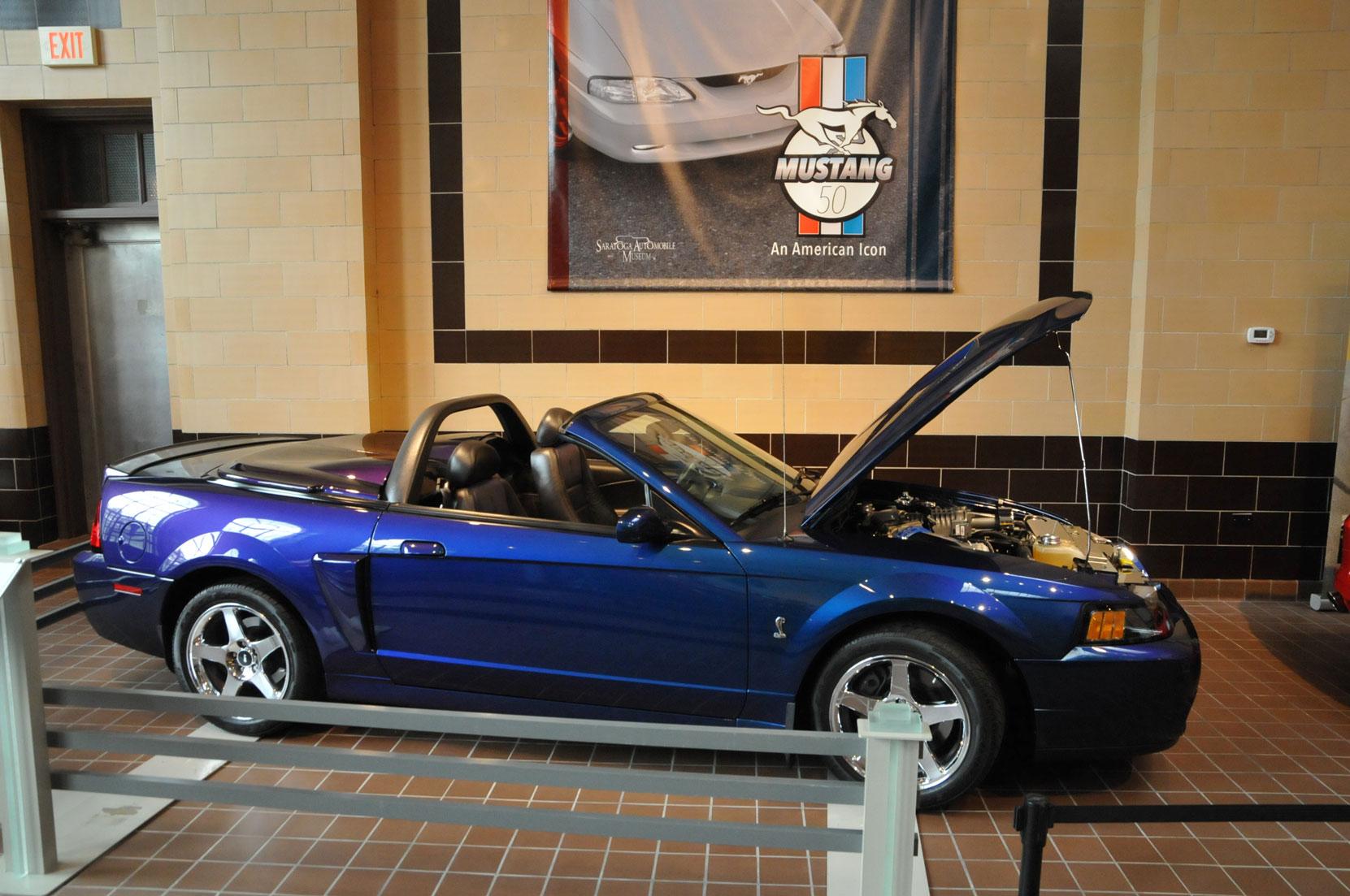 Mustang at 50166.jpg