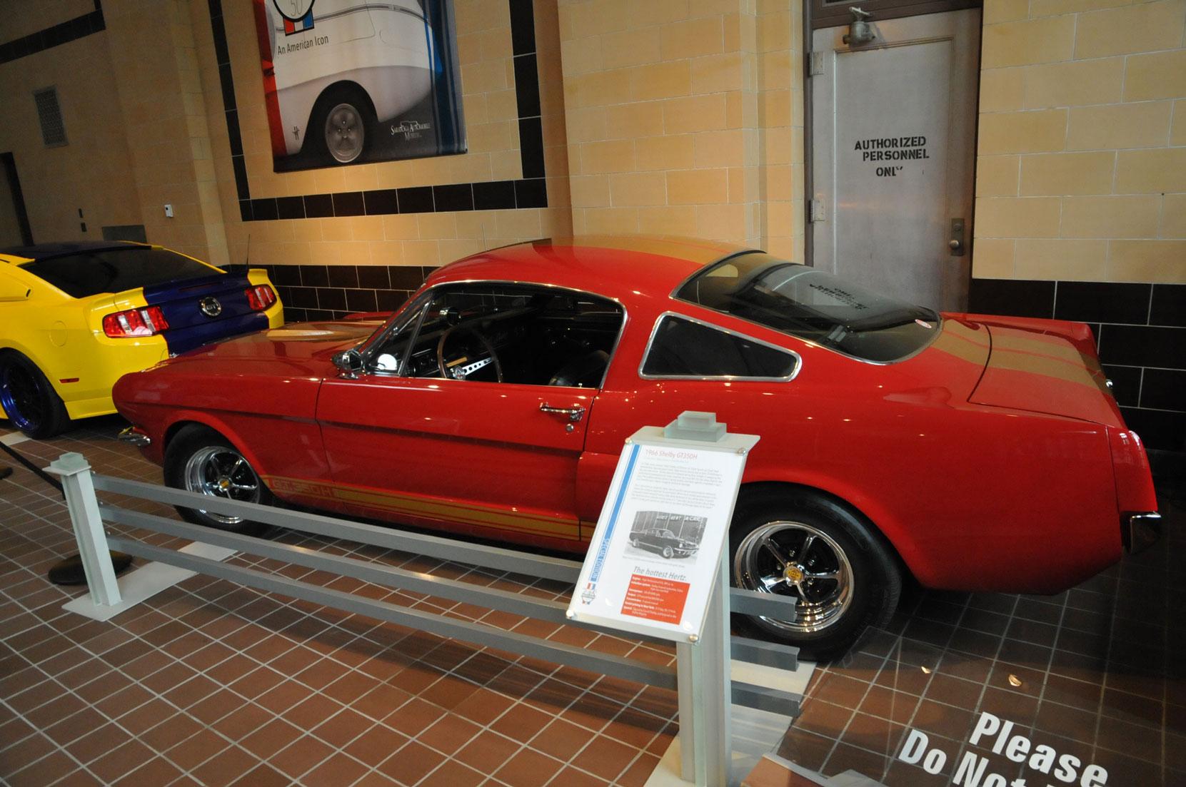 Mustang at 50168.jpg