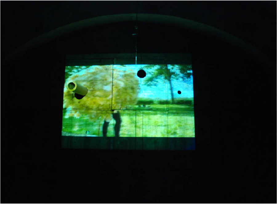 Video and Sound installation collaboration with artist Mariana Lopez. We actually made a giant costume out of sheep wool and chicken wire and then filmed ourselves chasing a field full of sheep around blindly running because there were no eye holes built into our custom. We later projected the image onto the wall as part of a larger series of images and live performance.