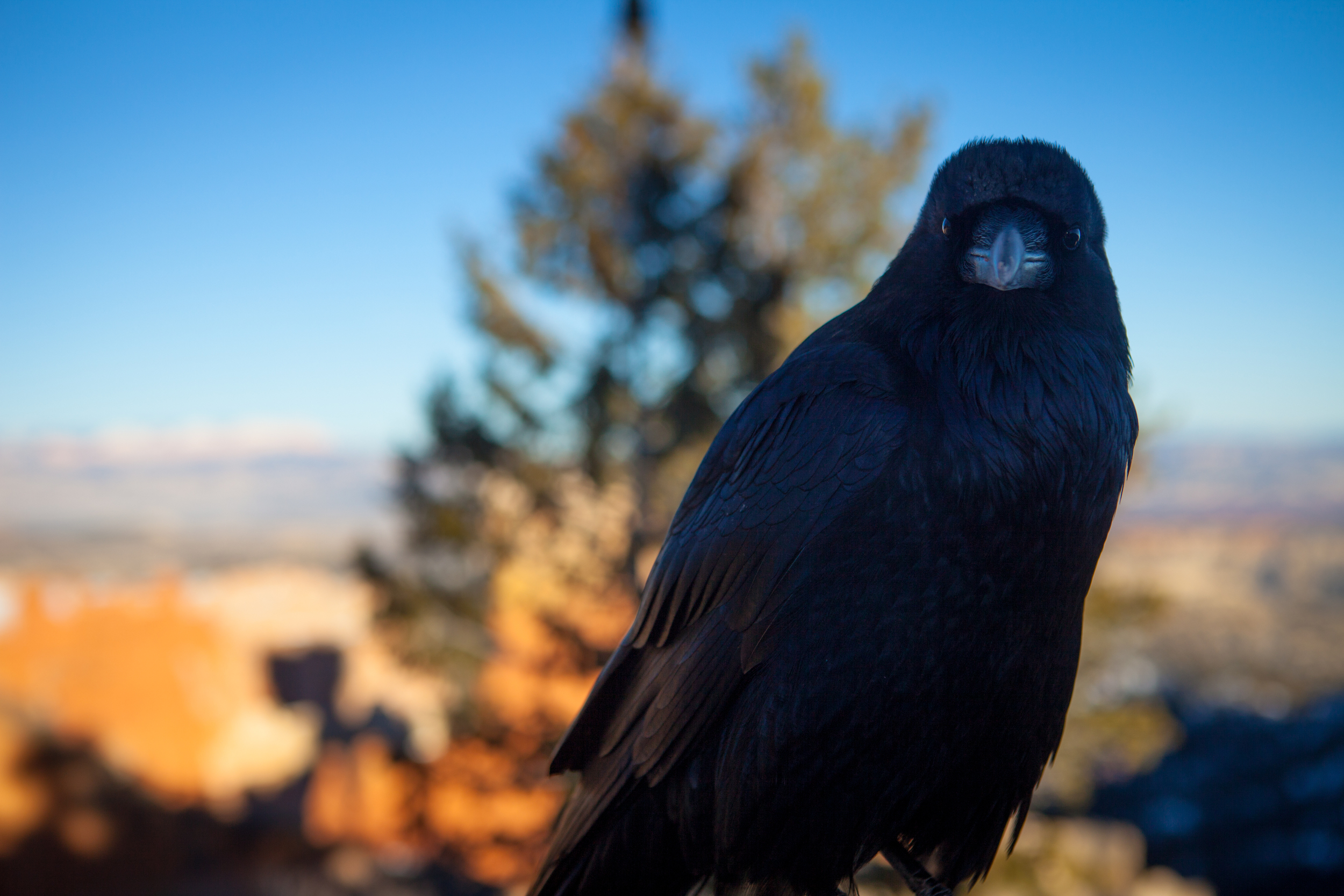 2014.01 - Utah Trip Photos.jpg