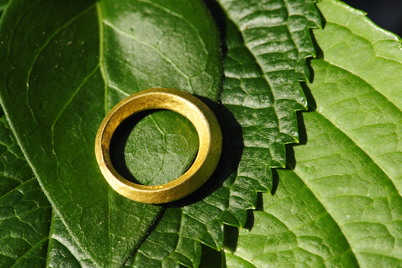 hand forged in 24k gold, this is a shape I find fascinating.