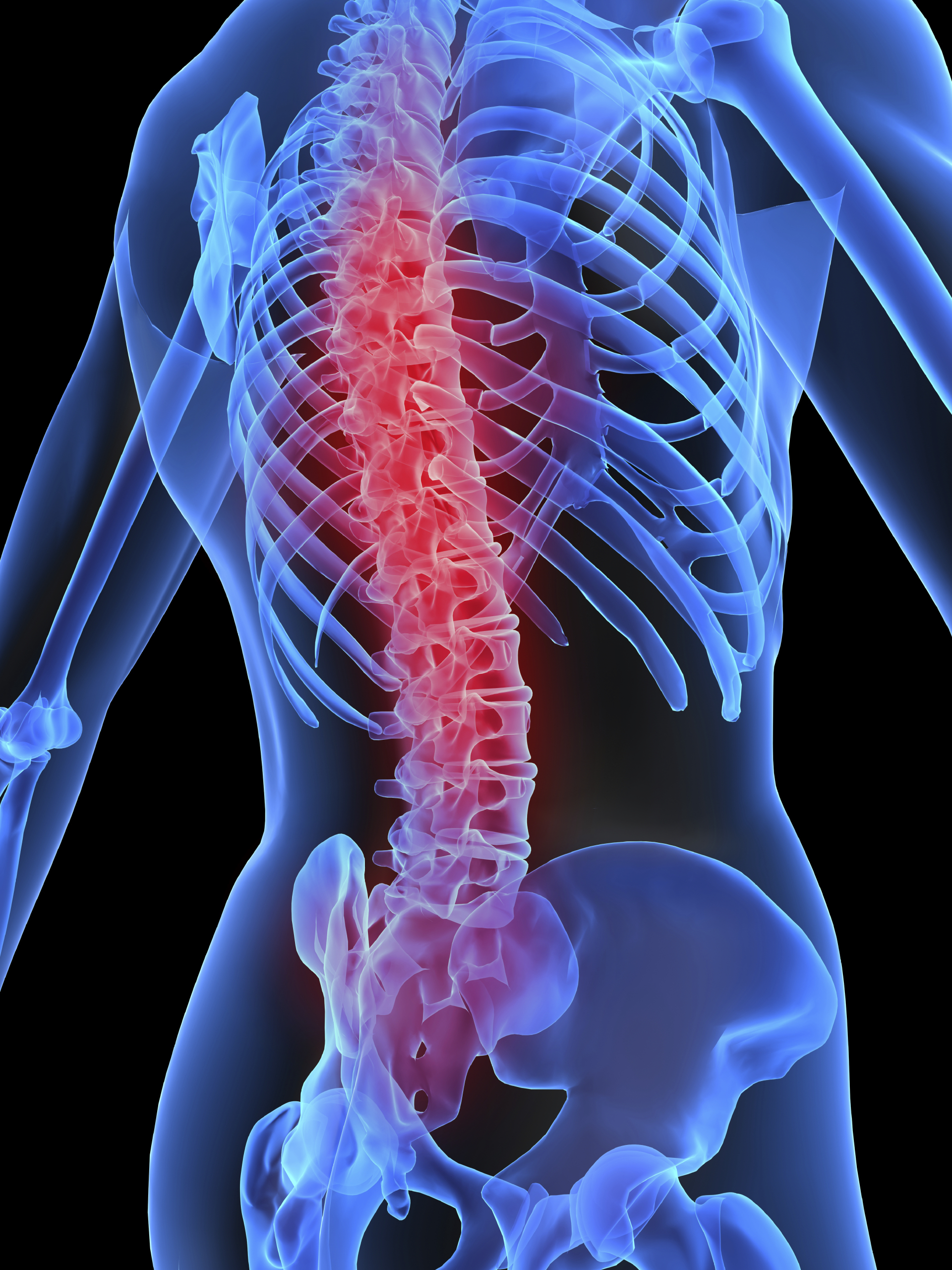 Spinal Assessment and Adjustments