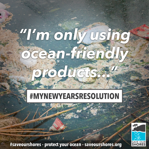 http://saveourshores.org/new-years-resolution/