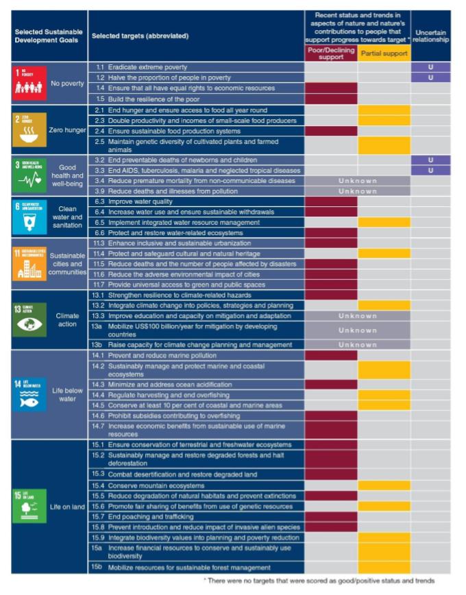 UN Report Goals Table.PNG