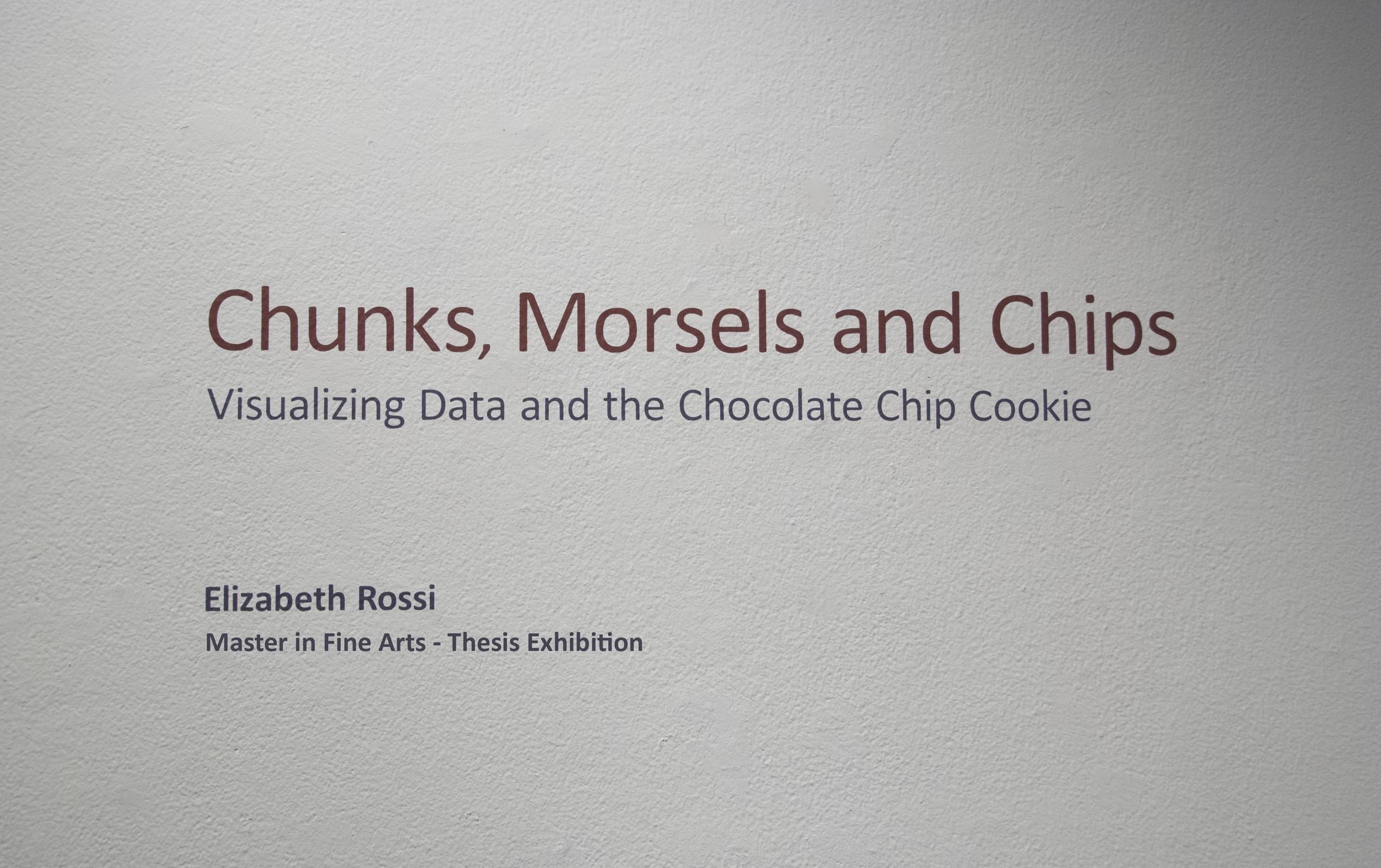 Exhibition Title - Title wall to introduce my thesis exhibition.