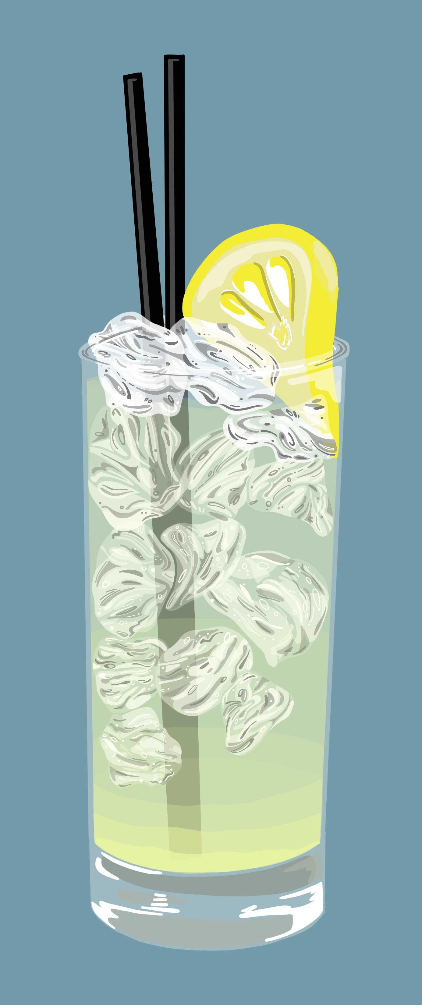 Lemonaide_SS.jpg